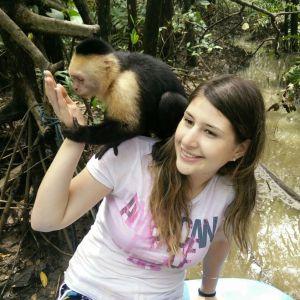 לדבר עם הקופים בקוסטה ריקה