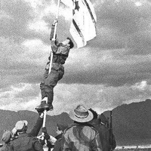 דגל הדיו